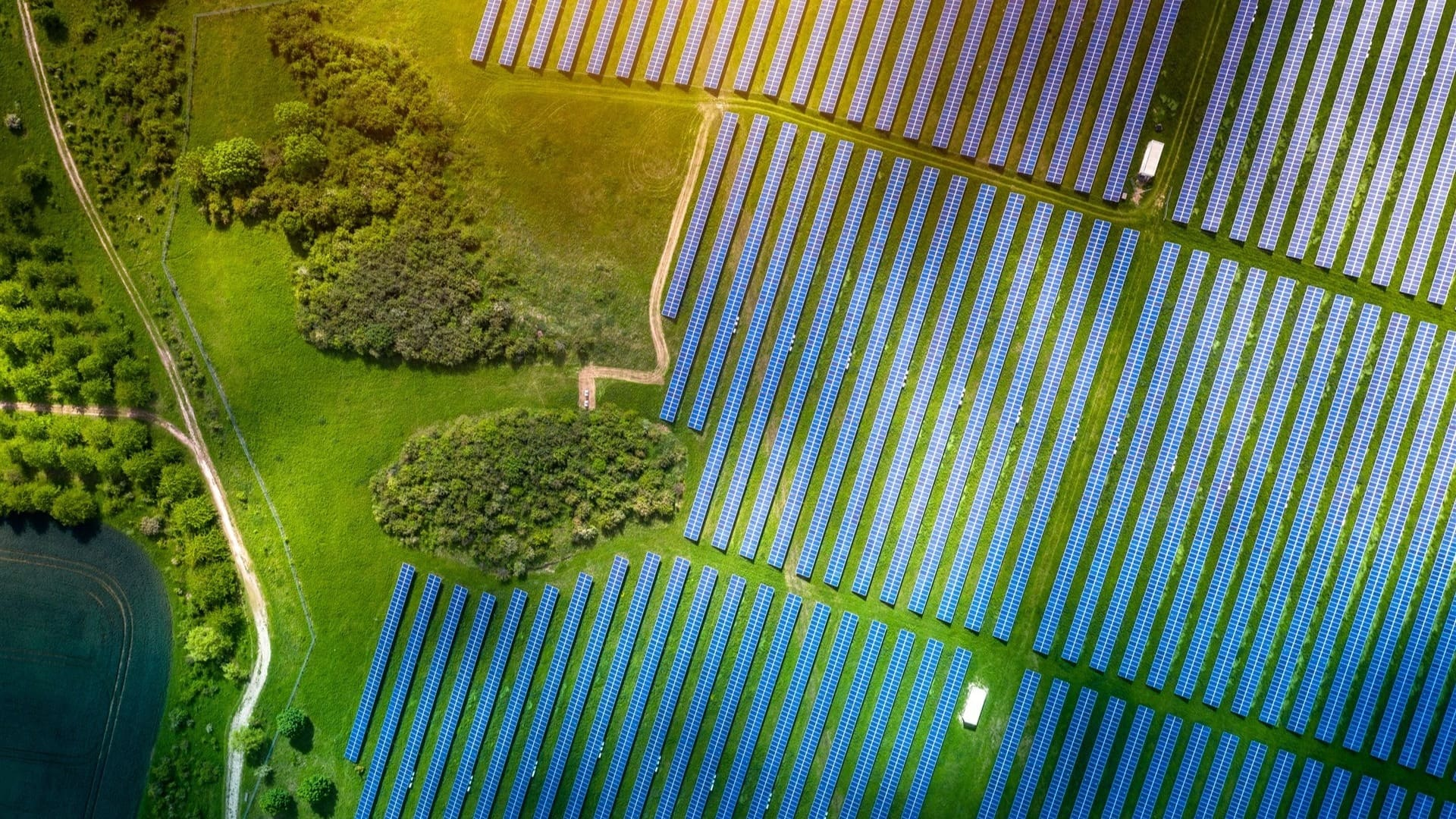 Aerial view of solar panels on the green ground